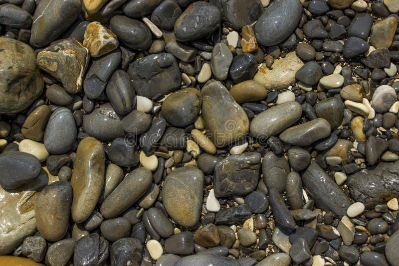 沿海粗暴海小卵石 库存图片