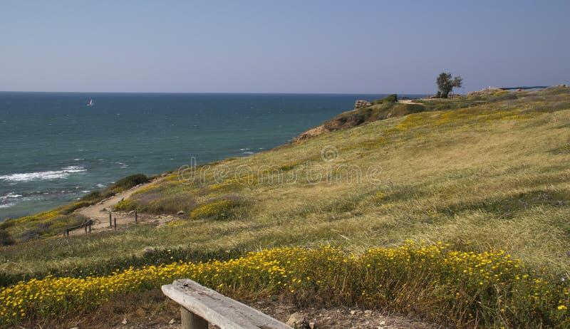 沿海草甸地中海 库存照片