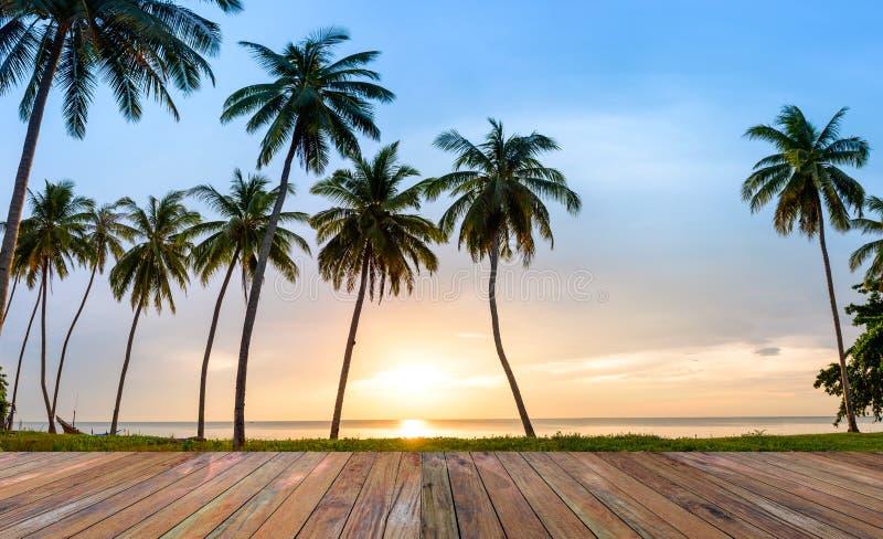 沿海,在热带海滩的可可椰子风景在日落背景 免版税图库摄影