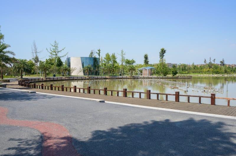沿涂焦油路的被操刀的道路在湖附近在晴朗的summe城市 免版税库存图片
