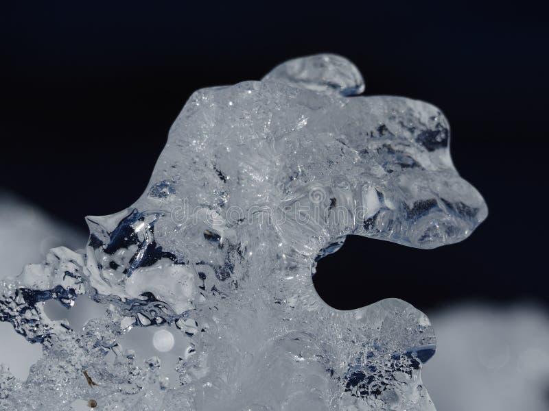 沿渥太华河的天然冰形成 免版税库存图片