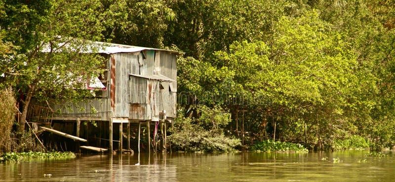 沿湄公河,越南的议院 免版税库存图片