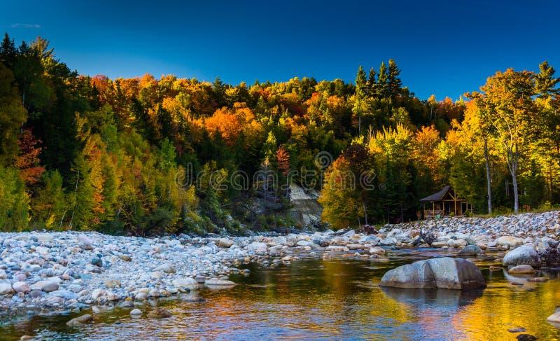沿皮博迪河的秋天颜色白山国民的 免版税库存照片