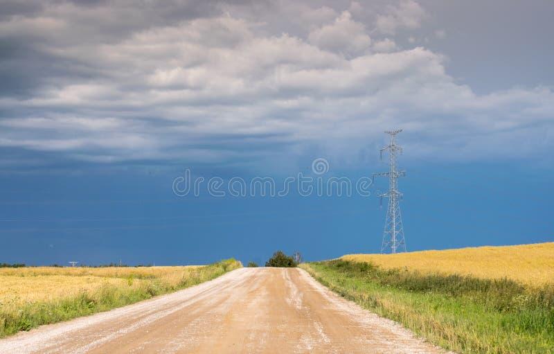 沿美丽如画的黄色领域的农村土路在雨前 免版税库存照片