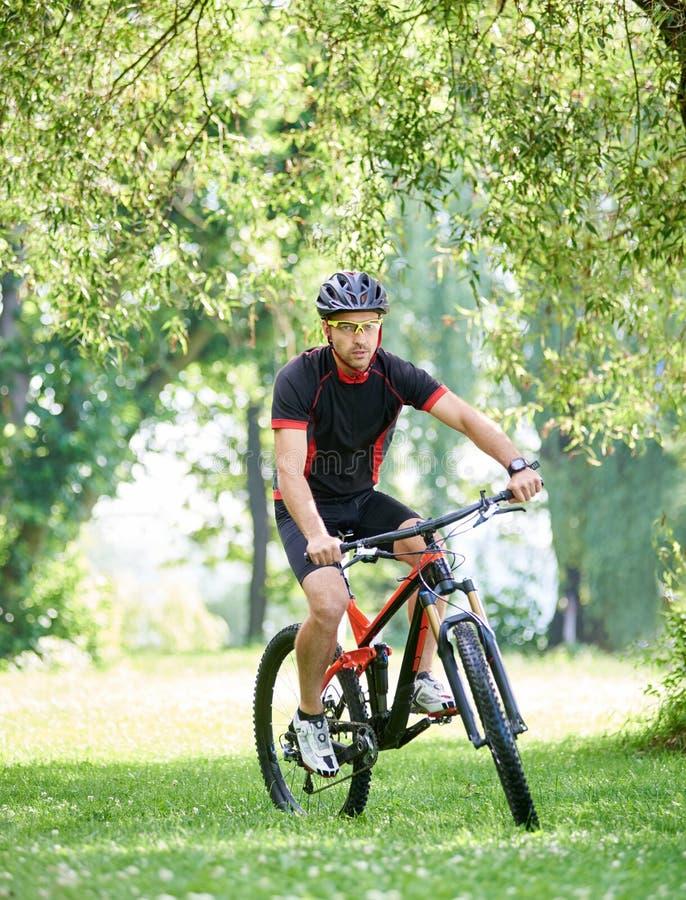沿美丽的绿色公园胡同的男性骑自行车者骑马自行车 免版税库存照片