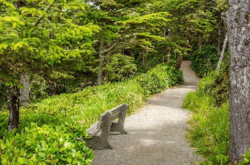沿自然痕迹的长凳 图库摄影
