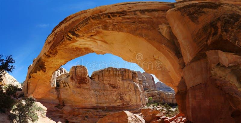 沿自由常设自然砂岩曲拱的广角看法 免版税库存照片