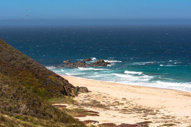 沿蒙特里海岸,加利福尼亚的沙子海滩 免版税库存照片