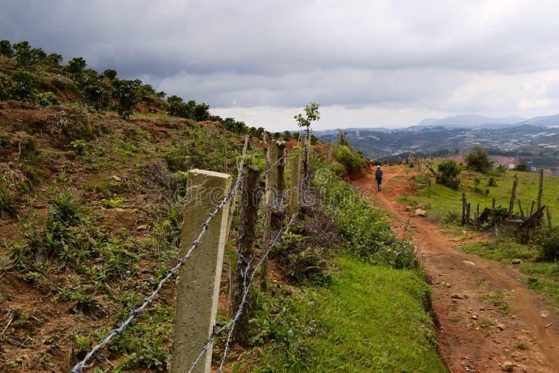 沿越南咖啡种植园的农村土路 免版税库存图片