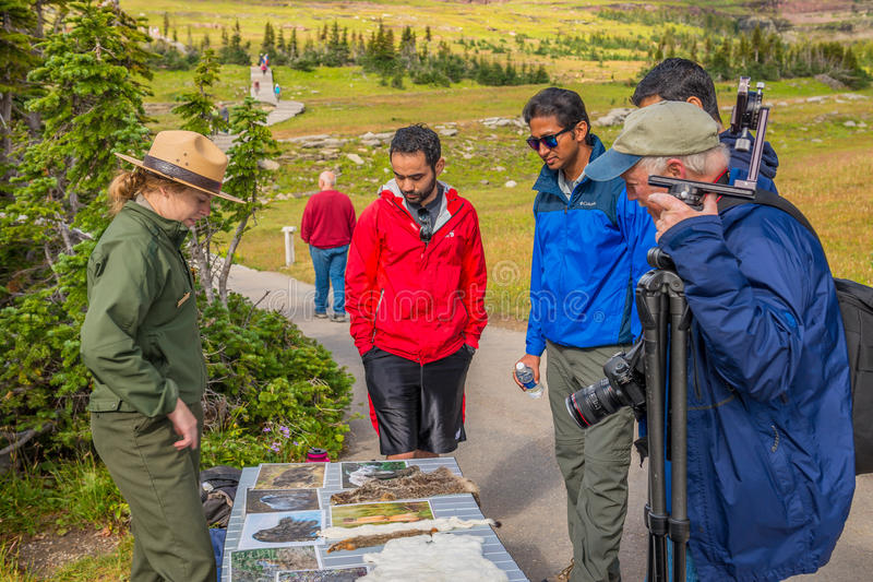 沿足迹冰川国家公园的解释性别动队员 免版税库存照片