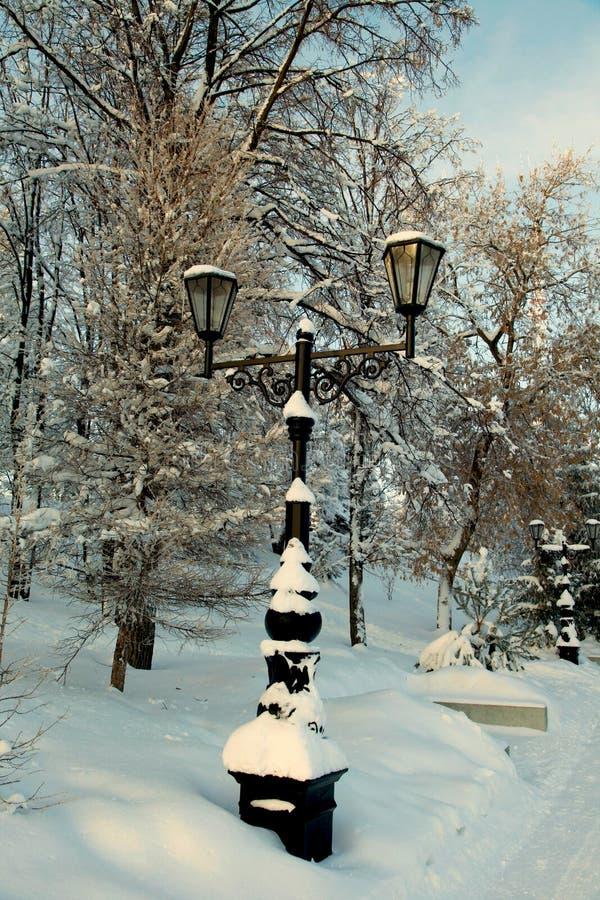 沿路旁的积雪的路灯柱在冬天公园 免版税库存照片