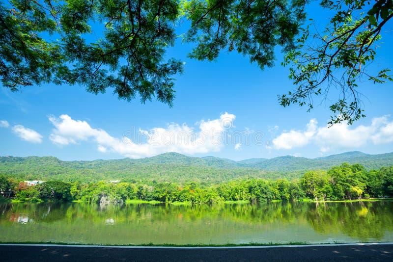 沿路风景视图在Ang Kaew清迈大学树木丛生的山天空蔚蓝背景中 库存照片