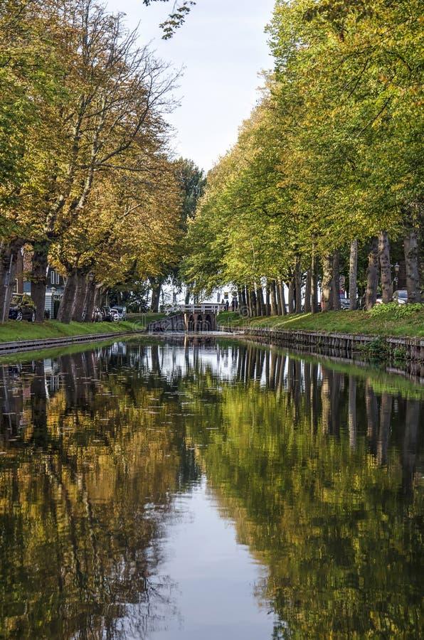 沿途有树的运河在秋天 库存照片
