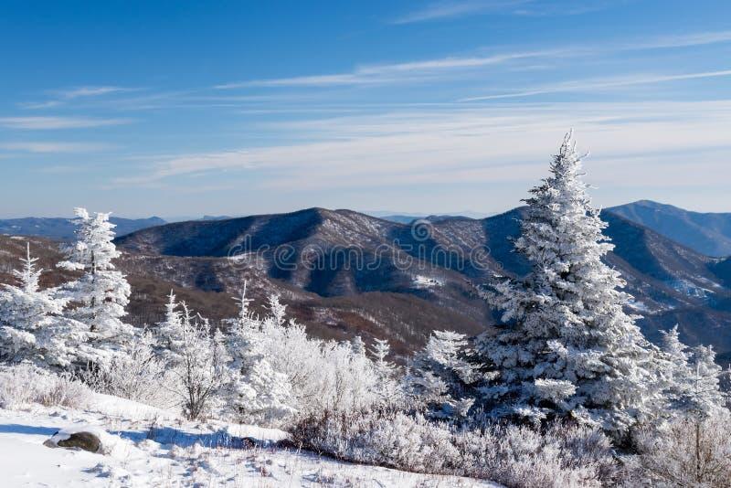 沿阿巴拉契亚足迹的冬天场面 免版税库存图片