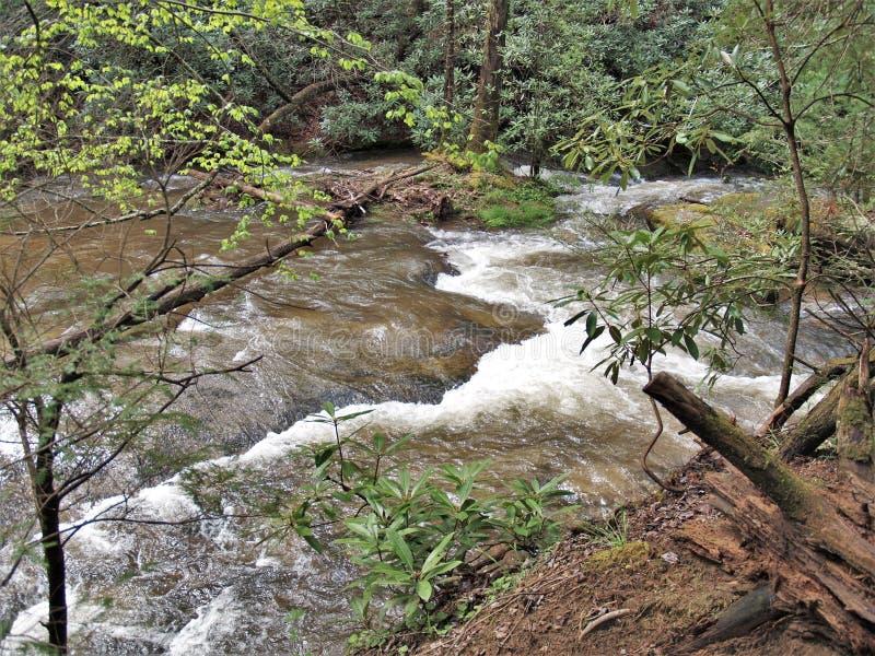 沿顽固的人小河的小瀑布在北卡罗来纳 库存照片