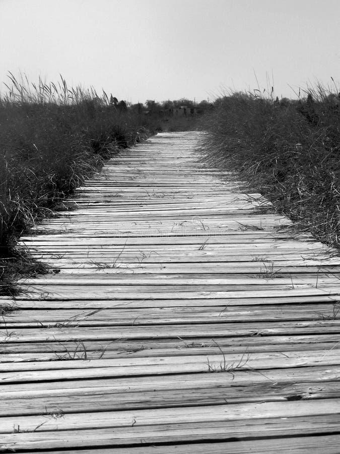 沿黑色木板走道密执安湖白色 免版税库存图片