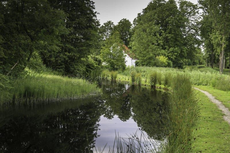 沿水小河的美好的风景看法在公园 免版税图库摄影