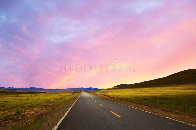 沿绿色草甸的弯曲道路 库存照片
