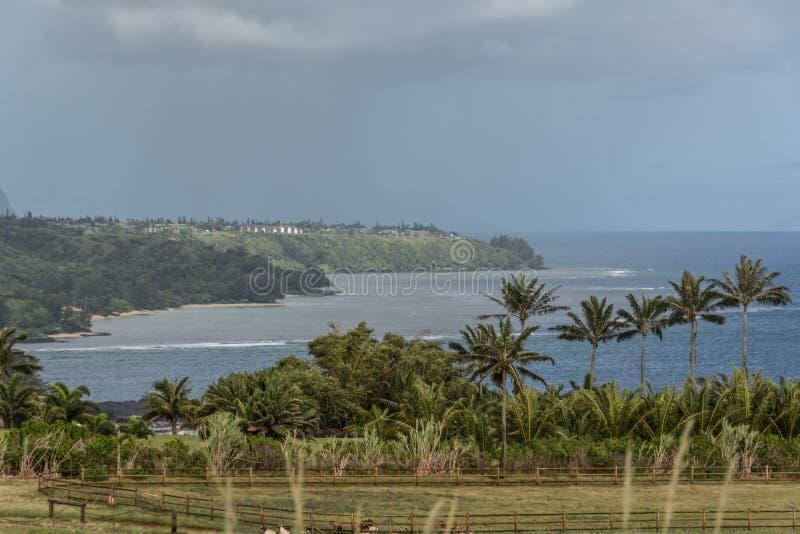 沿Kilauea点,考艾岛的海岸 库存照片