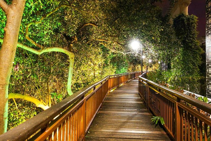 沿Melaka河的夜风景走的足迹 马六甲市是a 图库摄影