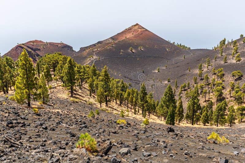 沿Ruta de los Volcanes,在火山的美丽的远足的道路,拉帕尔玛岛,加那利群岛的火山的风景 库存照片