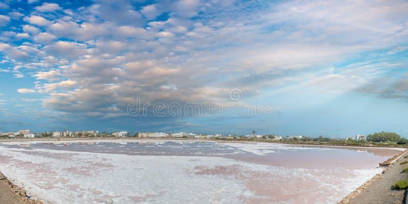 沿Th的福门特拉岛塞萨利内斯盐厂红色橙色水湖 库存照片