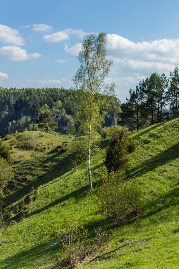 法兰克的瑞士的风景 免版税库存照片