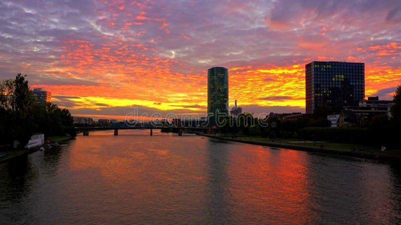 法兰克福主要河日落  库存图片