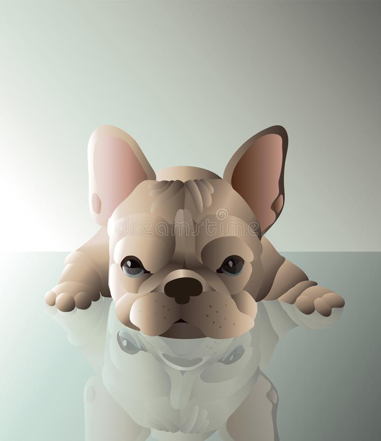 法国公牛狗婴孩 浅褐色的颜色 向量例证