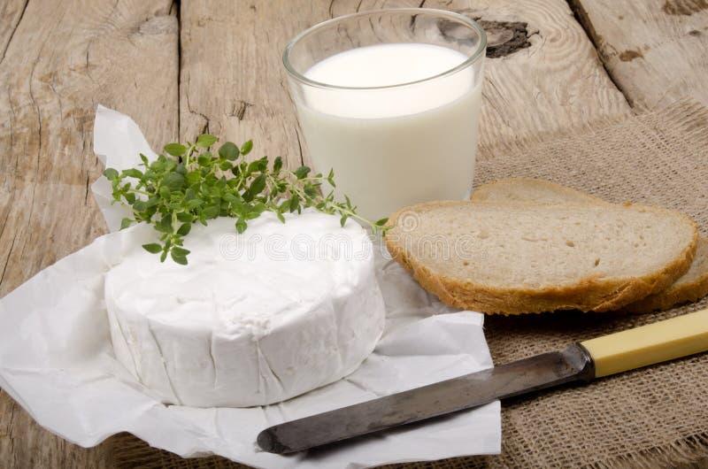 法国咸味干乳酪软制乳酪用麝香草 免版税库存图片