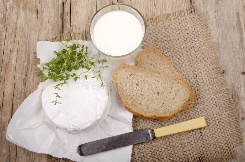 法国咸味干乳酪软制乳酪用麝香草 免版税库存照片