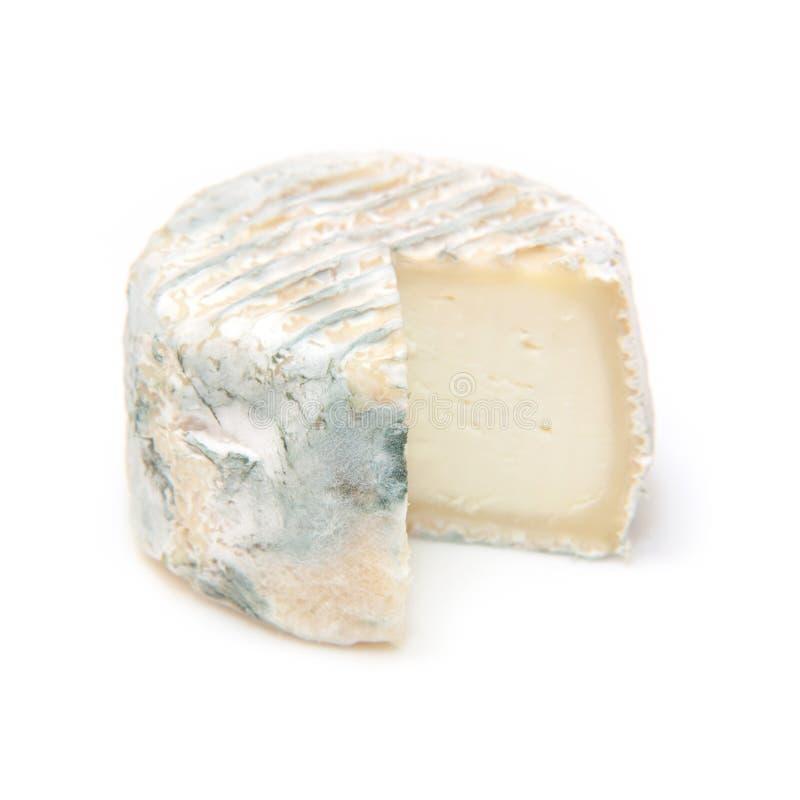 法国山羊乳干酪 库存照片