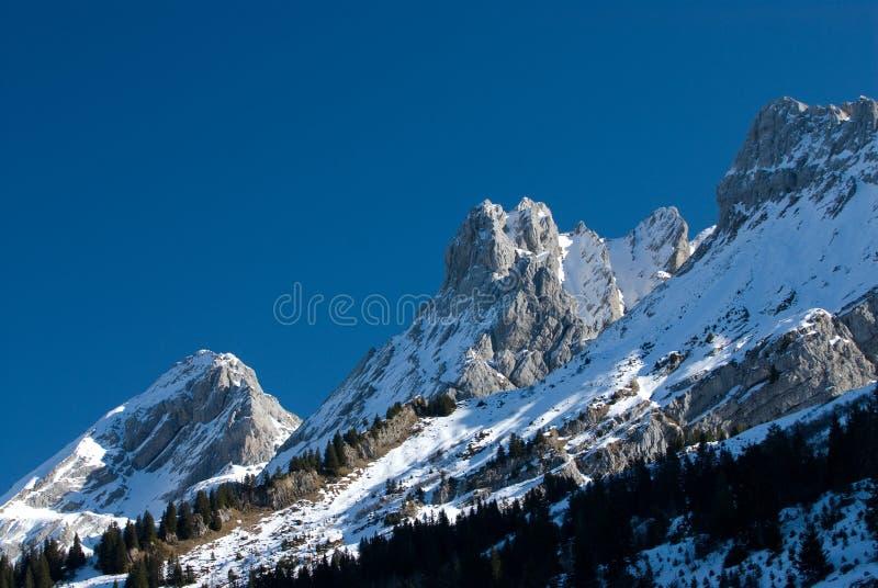 法国山 免版税库存照片