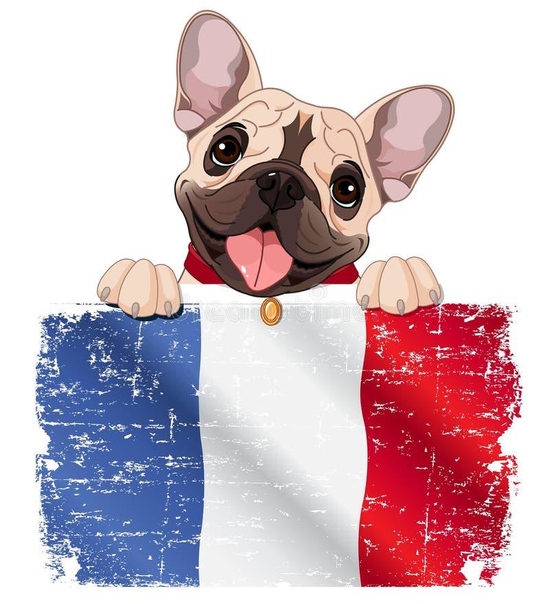 法国牛头犬爱好者 库存例证