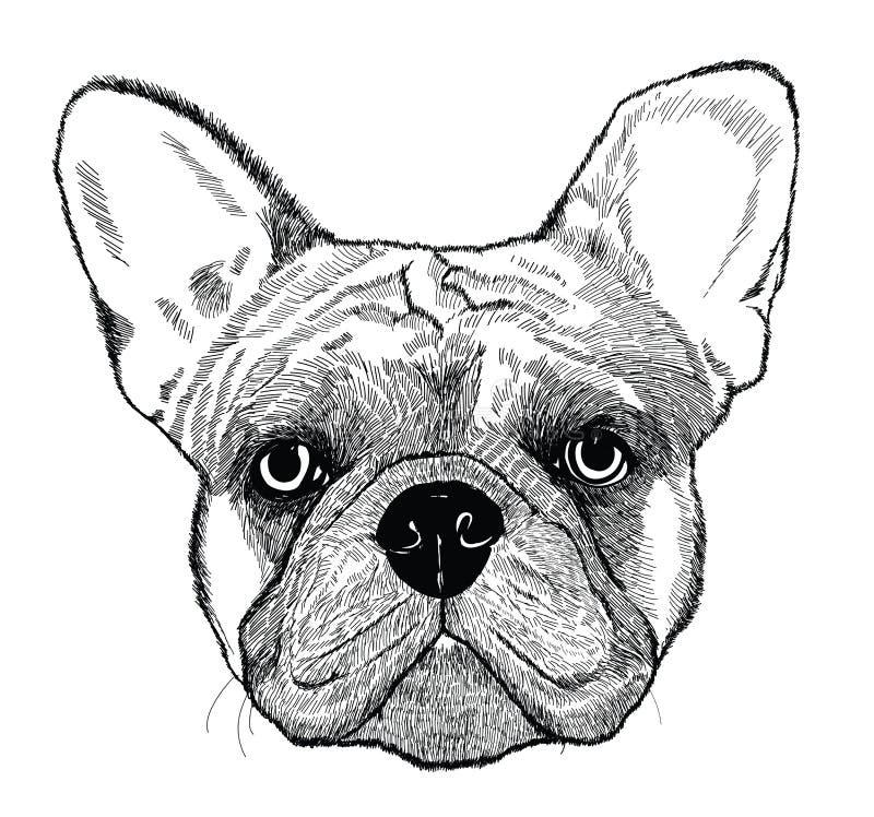 法国牛头犬,传染媒介狗例证 库存例证