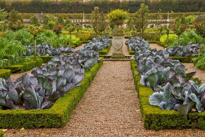 法国菜园 库存图片