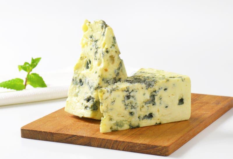 法国蓝色乳酪 图库摄影