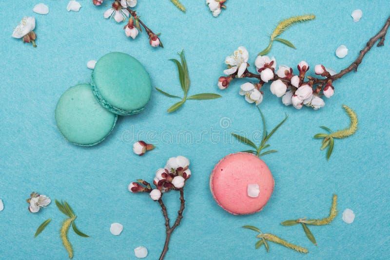 法国蛋白杏仁饼干点心和花在绿松石背景 免版税库存图片