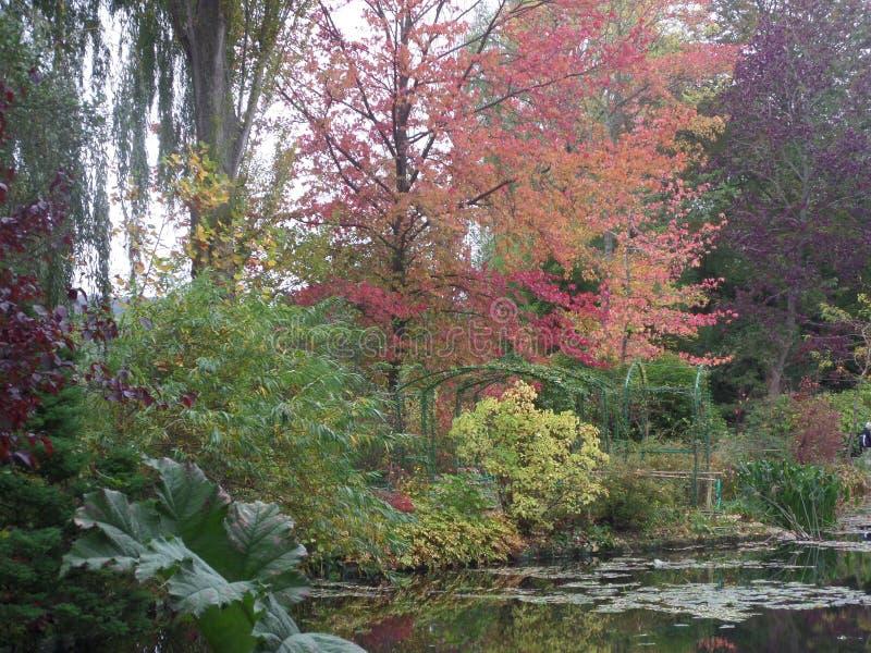 法国,卢瓦尔河流域,吉韦尔尼,克洛德・莫奈` s庭院,池塘, 图库摄影