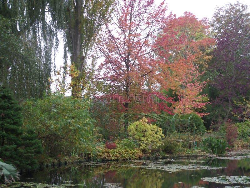 法国,卢瓦尔河流域,吉韦尔尼,克洛德・莫奈` s庭院,池塘, 库存图片