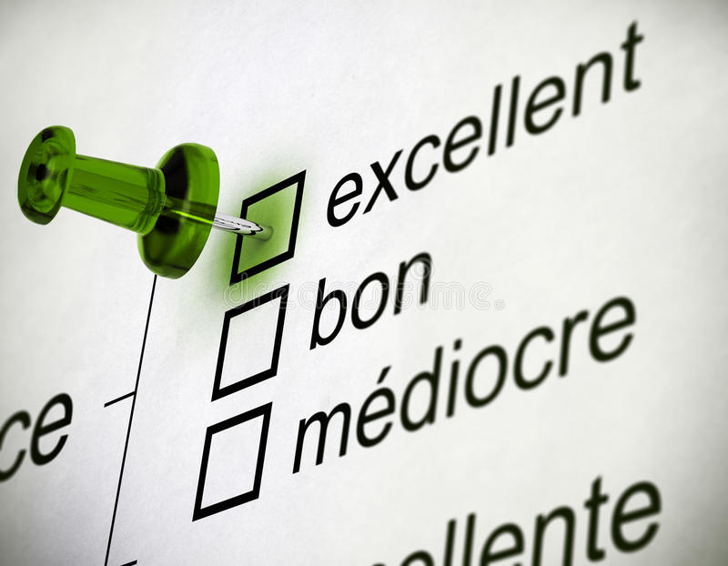 法国质量调查 库存例证