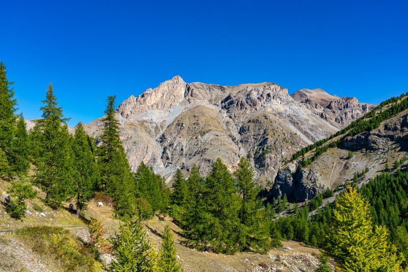 法国Col de la Cayolle山口及周围群山景观 库存图片