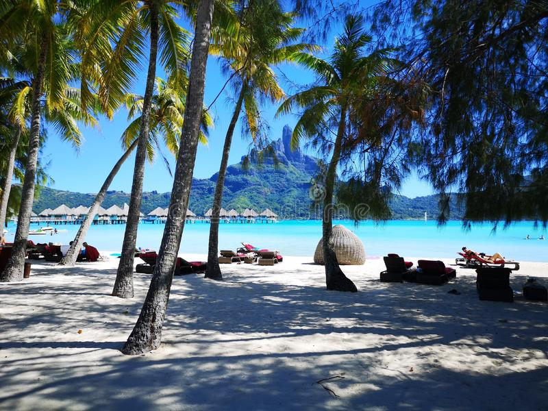 法属玻里尼西亚博拉博拉岛海岛 免版税图库摄影
