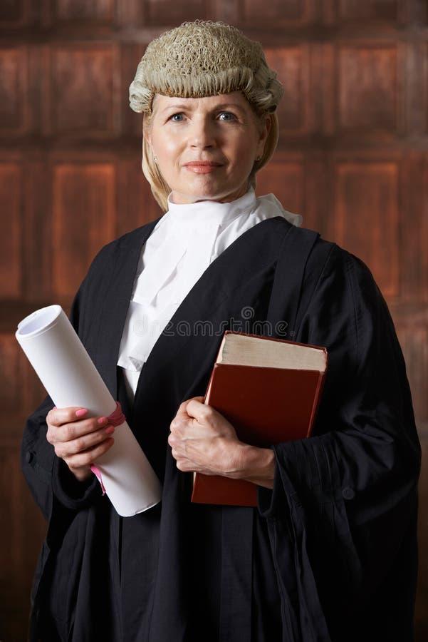 法庭上拿着摘要和书的女性律师画象 库存照片