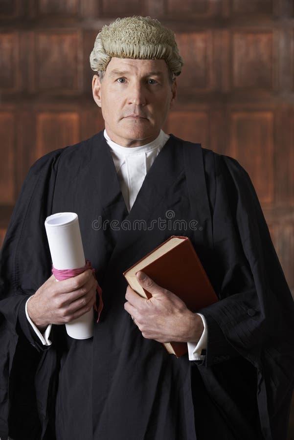 法庭上拿着摘要和书的男性律师画象 免版税库存照片