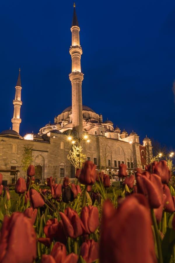 法提赫清真寺,伊斯坦布尔,土耳其 库存图片