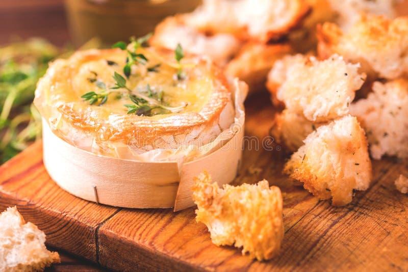 法语烘烤了软制乳酪乳酪用麝香草和长方形宝石面包 免版税库存图片