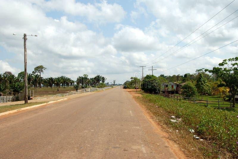 泛美的高速公路通过在马瑙斯,巴西南美附近的亚马逊雨林 库存图片