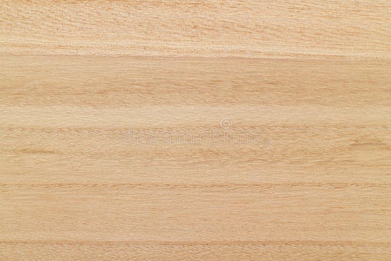泡桐属木板纹理背景 库存照片
