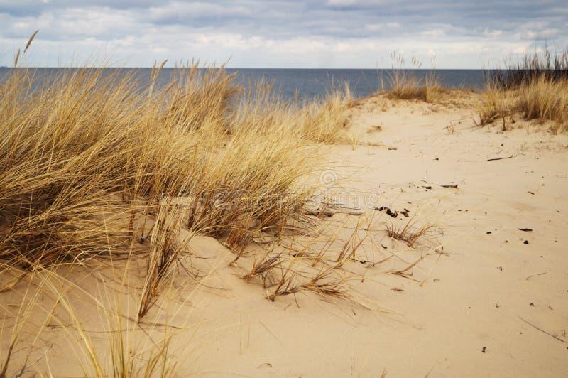 波儿地克的海滨 免版税库存照片